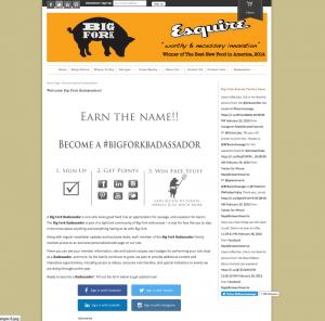 Badassador Page - Internal Social Networking